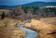 rzeka-listopad-2009-bieszczady-san-tarnawa-gles0950-copy